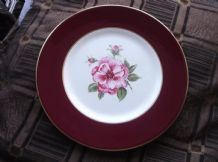 RARE STUNNING DISPLAY PLATE MYOTT HANDPAINTED ROSE SIGNED JMC MAROON RIM 10.5""